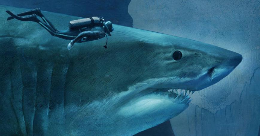 alt-sharks-interactive-promo.ngsversion.1465579059996.adapt.1900.1